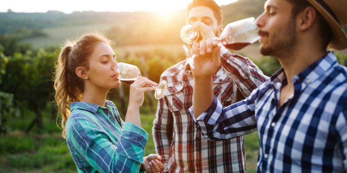 Le vin : un placement de choix !